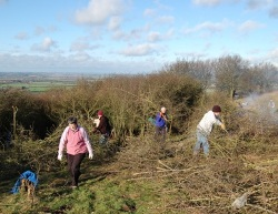 80 take part in giant work party on Dunstable Downs